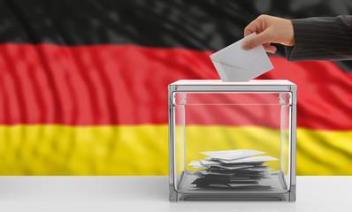 Voter on a Germany flag background. 3d illustration
