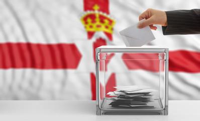 Voter on a Northern Ireland  flag background. 3d illustration