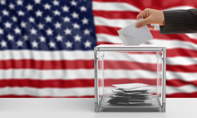 USA elections. Voter on an USA flag background. 3d illustration