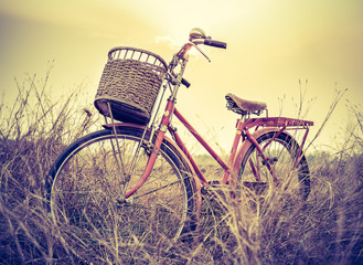 beautiful landscape image with Bicycle at sunset on summer grass field