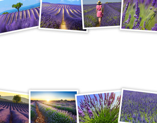 Heap of lavender fields travel photos with a white background