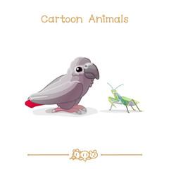 Toons series cartoon animals: Grey parrot & mantis