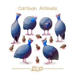 Toons series cartoon animals: guineafowls