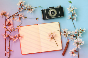 cherry blossoms tree, open blank notebook and old camera