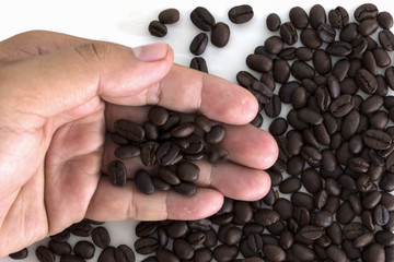 Many coffee beans on hand on white background