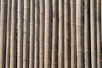 Bambus-Zaun