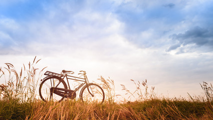 beautiful landscape image with Bicycle at sunset,Vintage bicycle on summer grass field
