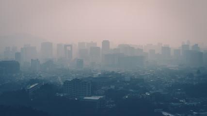 City fine dust