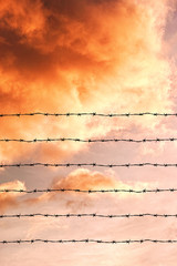 wire fence in the sky background