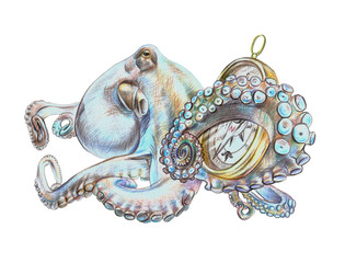 Illustrationt octopus with compass made with color pencils on white background