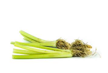 fresh celery on white .