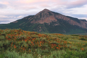 Mt. Crested Butte near Crested Butte, CO