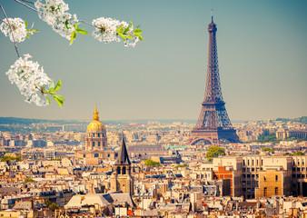 Aluminium Prints Paris View on Eiffel Tower in Paris at spring, France