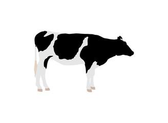 乳牛のイラスト素材