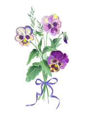 Bouquet of pansies with a bow, watercolor.