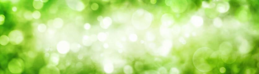 Breiter Hintergrund aus schönen unscharfen Glanzlichtern im Grünen