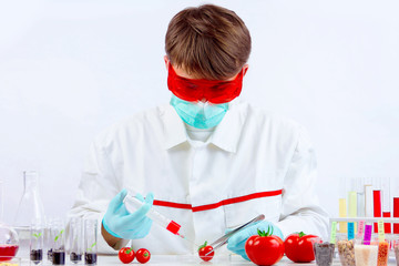 Scientist holding gmo plant for testing in biolaboratory. Injecting the tomato