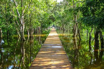 Camino al templo de Angkor