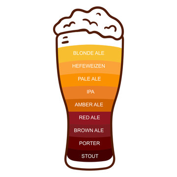 Beer glass craft vintage type infographic chart