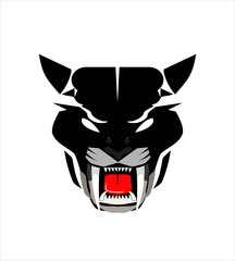 panther, staring panther , wild cat.