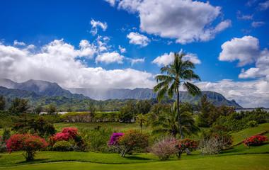 Wall Mural - Kauai garden and mountains