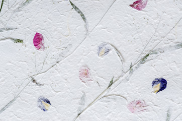 White mulberry paper with petal and leaf texture background.
