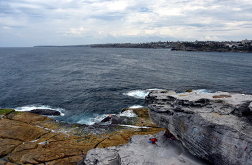Eastern coastal view from Ray O'Keefe Reserve at North Bondi.