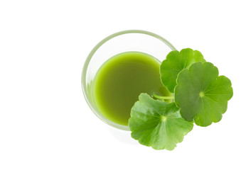 Closeup top view Gotu kola's leafs drink on white background, health care and herb medical concept