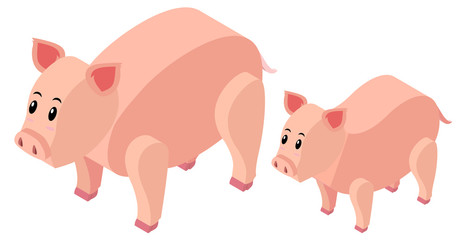 3D design for farm pigs
