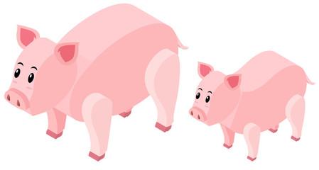 3D design for farm pigs