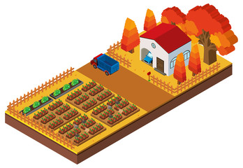 3D design for farm scene with crops and house