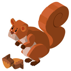 3D design for squirrel and walnut