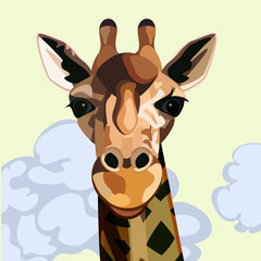 Face and neck of a giraffe from the front with a yellow sky and clouds behind it.