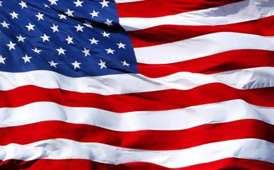 American Flag Wall mural