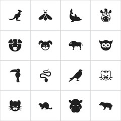 Set Of 16 Editable Zoology Icons. Includes Symbols Such As Serpent, Feline, Wildlife Castor And More. Can Be Used For Web, Mobile, UI And Infographic Design.