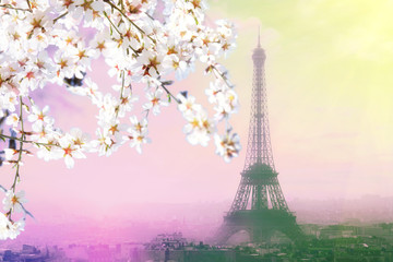 Aerial view of Paris cityscape with Eiffel tower at pink sunset . Vintage colored picture. Business, Love and travel concept