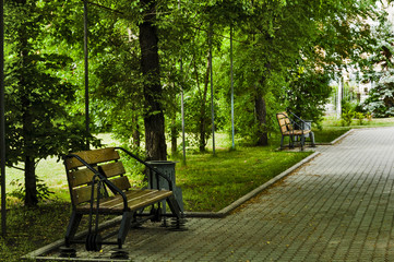 in the park on a bench