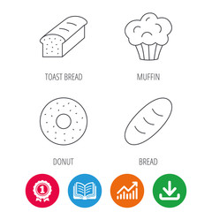 Muffin, donut and toast bread icons. Fresh bread linear signs. Award medal, growth chart and opened book web icons. Download arrow. Vector