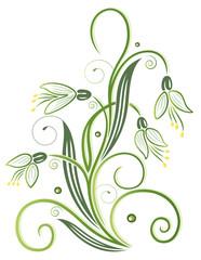 Schneeglöckchen, grüne Ranke mit Blumen. Frühling.