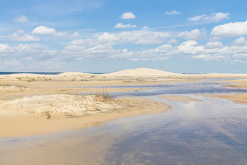 Dunes with some vegetation and puddles at Lagoa do Peixe lake