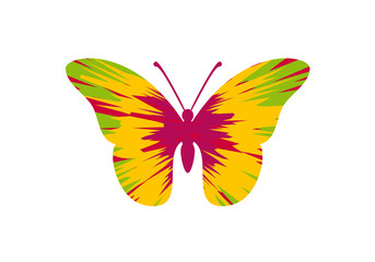 Colorful butterfly vector. Butterfly on a white background. Icon of abstract butterfly