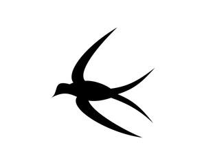 Swallow Icon Illustration