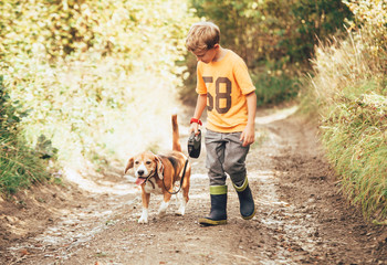 Boy walks with his beagle dog on the country road.