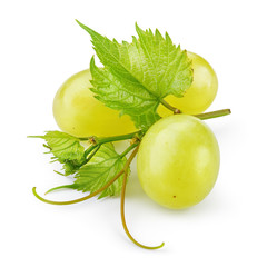 Green grape. Bunch of fresh berries with leaves and tendrils isolated on white. Full depth of field.