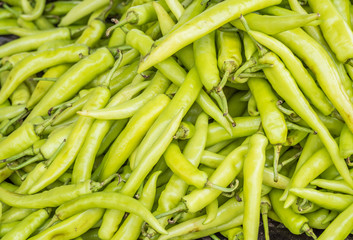 Green pepper or chili pattern