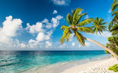 Einsamer Strand auf den Malediven