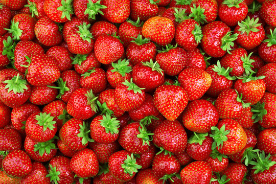 Strawberry. Fresh organic berries macro. Fruit background