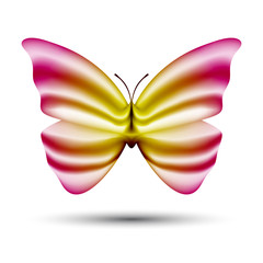 abstract vector butterfly isolated on white background