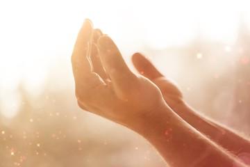 Human hands open palm up.