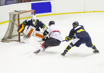 ice hockey player during a game